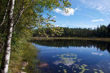 """Rust"" in Nuuksio Nationaal Park, Zweden van Kaj Hendriks"