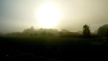 misty sun van colinear ammit