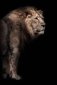 bête lunaire (cendrée). Un puissant lion asiatique mâle sur le fond d'une grotte sombre, des bambous sur Michael Semenov