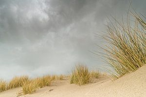 Donkere lucht boven de duinen van