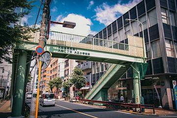 Japanse loopbrug von Sascha Gorter