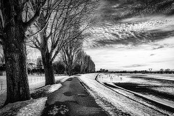Winterlandschaft mit Bäumen Schnee und Wolkenformation am Rheinufer bei Düsseldorf in schwarz-weiss von Dieter Walther
