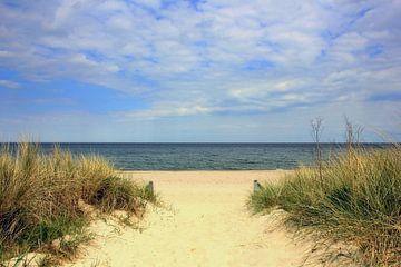 Strandaufgang im Mai sur Ostsee Bilder