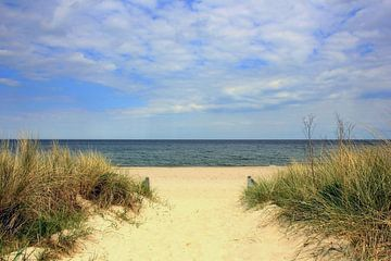 Strandaufgang im Mai van Ostsee Bilder