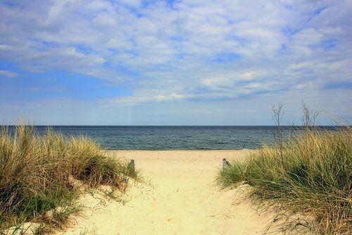 Strandaufgang im Mai
