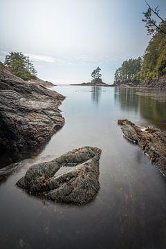 Canadian coast von Remco van Adrichem