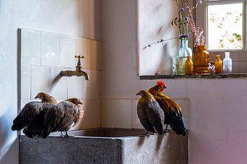 home sweet home van Affect Fotografie