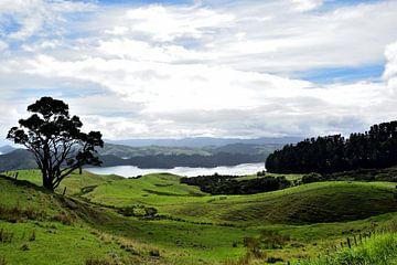 Das ultimative Neuseeland von Denise van Gerven