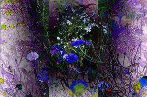 Blumenwiese Wildblumen Abstrakte Fotocollage von Patricia Piotrak