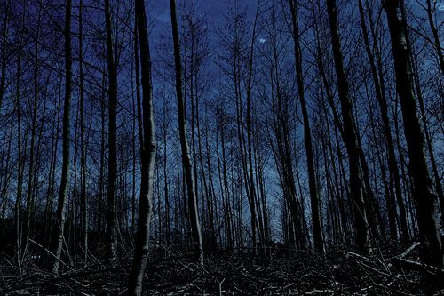 nachtblauw van