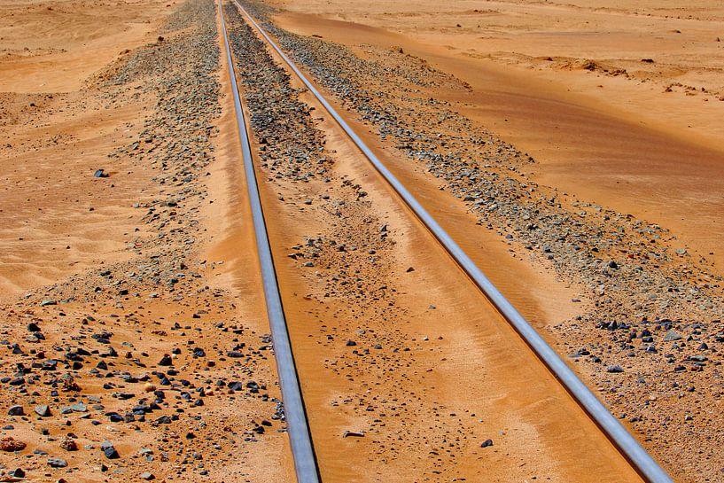 Verlaten spoorlijn van Inge Hogenbijl