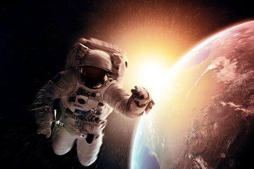 Gravity von Justin Nederkoorn