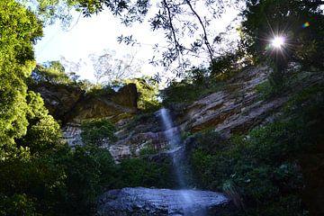 Chasing Waterfalls van Wessel Smit