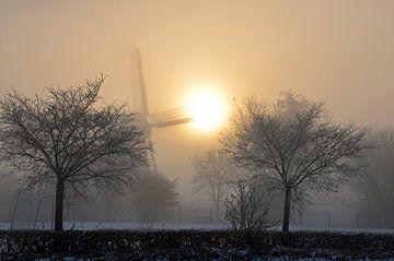 misty van Corinne Alferink