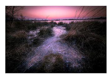 Ijs koude zonsondergang van Bjorn Dockx