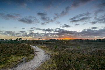 Renderklippen tijdens zonsondergang van Sjoerd van der Wal
