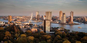 Rotterdam Erasmusbrug sur John Ouwens
