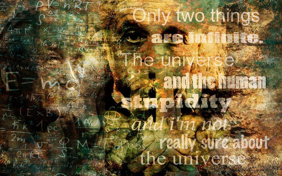 Albert Einstein van Stef Van Campen