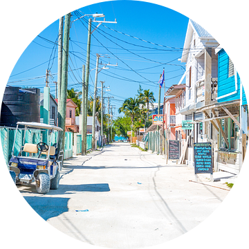 Kleurrijke hoofdstraat op Caye Caulker in Belize van Michiel Ton
