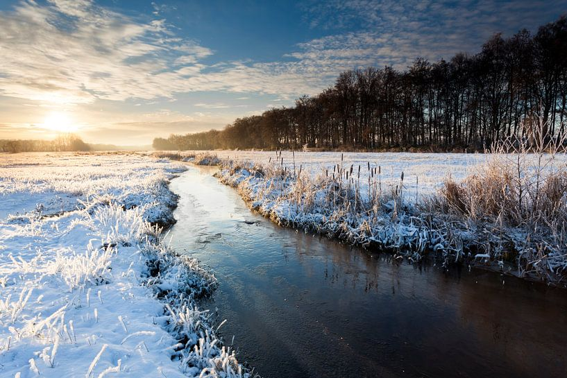 Oostervoortse Diep in de sneeuw van Ron ter Burg