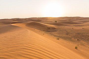 Zandduin in Dubai van Martijn Bravenboer