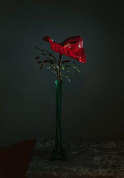 Red Anthurium in langer grüner Kristallvase, Stilleben-Fotografie von Roger VDB