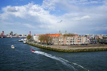 Een kijkje vanaf de Erasmusbrug van Alice Berkien-van Mil