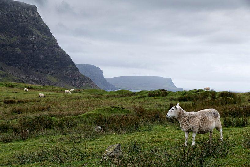 Landschap in Uig Highland van Ab Wubben