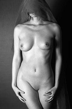 Nude sur Falko Follert