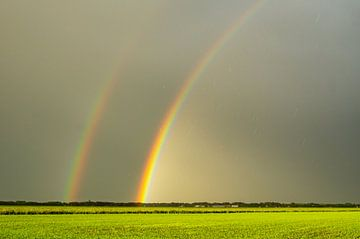 Dubbele regenboog. van Anita Lammersma