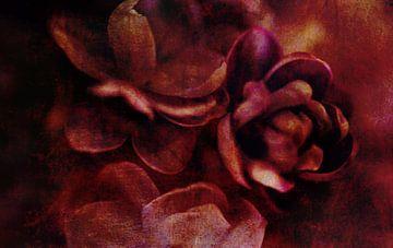 Rode bloesem van Anouschka Hendriks