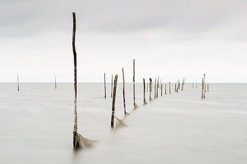 Palen boven water (NL) van Paul van der Zwan