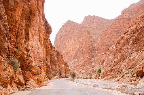 Rotslandschap in Roestkleuren: Todra Kloof, Marokko