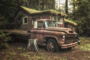 Dusty and rusty van Dennis Van Donzel