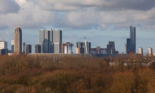 Het Feyenoord Stadion De Kuip in Rotterdam met het Park de Twee Heuvels op de voorgrond