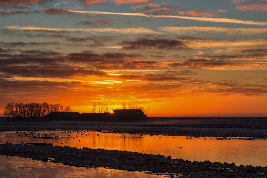 Zonsopkomst in de polder van Bram van Broekhoven