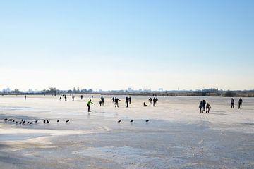 Schaatsers en meerkoeten op het ijs van Barbara Brolsma
