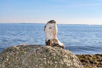 Steinstiefel am Gelben Ufer, Halbinsel Zudar auf Rügen von GH Foto & Artdesign