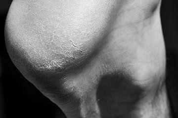 Puur, mijn huid von Catherine Blancquaert