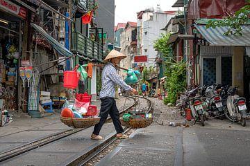 Vietnamese transport, Vietnam van Jelmer Laernoes