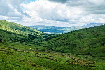 Prachtig landschap van