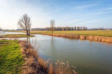 Natuurgebied Groesplaat bij Woudrichem (Noord-Brabant) von Ruud Morijn