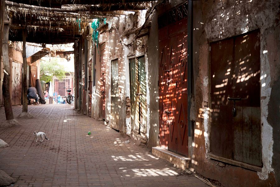 Marrakech Marokko van Veronie van Beek