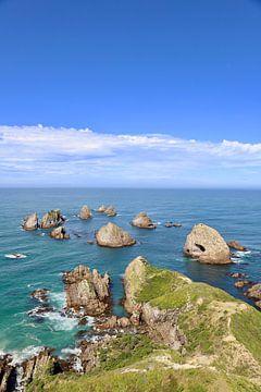 De rotsen bij Nugget Point - Nieuw Zeeland van Maupacadabra Fotografie