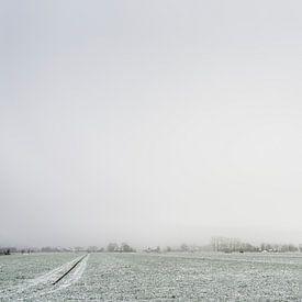 Winter in de polder van Tony Buijse
