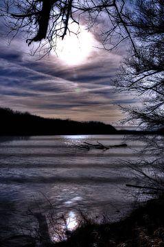 Floodplain -  Evening, van Christine Nöhmeier