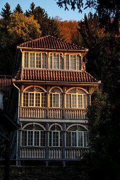 Het gouden huis van Amber de Jongh