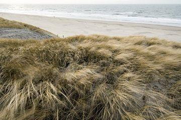 Dutch dunes von Dirk van Egmond