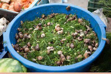 Slakken op een markt in Mallorca van t.ART