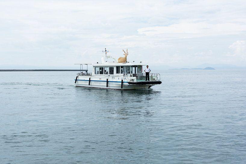 De Hertenboot van Marijn Kuijper
